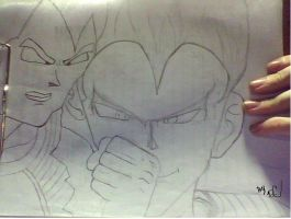 vegeta pic unlnked by DrCropes