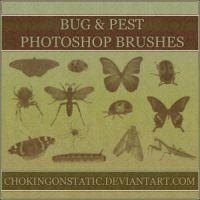 bug brushes by chokingonstatic