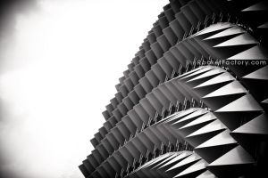 Triangle fins by frankrizzo