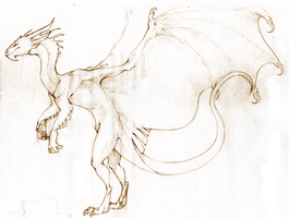 Dragon sketch by KrimalFancey