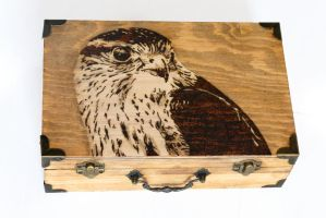 Merlin- Pyrography by lost-nomad07