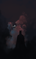 Batman Vs Spider-Man Fan Art by tamccullough