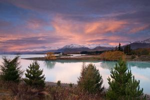 Pink Tekapo by chrisgin