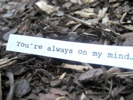 You're Always On My Mind. 3 by see-you-again