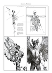 Anatomy of Hawkman by piri-pirimiri