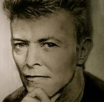 Mr. Bowie by Ziggster