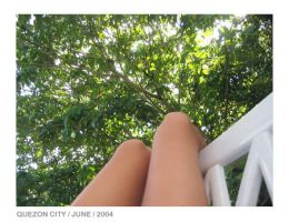 plants, chairs and legs? by manika