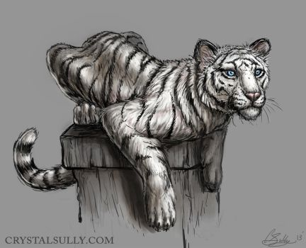 White Tiger - Moxie by CrystalSully