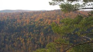 Canyon in Fall 3 by ToshirotheKnightWolf
