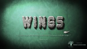 Wings by makorm