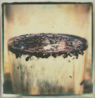 Ant Soup by JillAuville