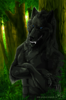 In the forest by WolfRoad