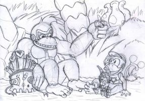 NNR:Donkey Kong Country Return by saber-th