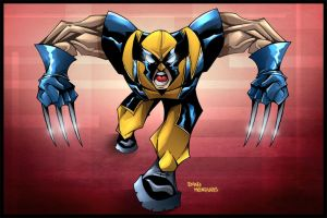 Wolverine by Dany-Morales