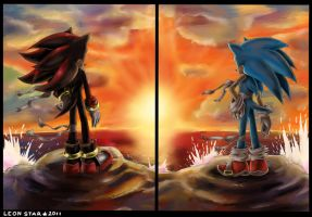 Sonic and Shadow by AmytheRose