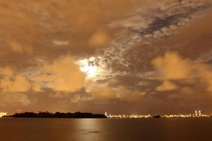 Miami Moonlight by workoutmaster