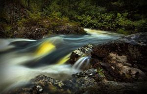 Gold River by Mizth