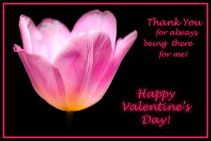 Valentine's Day - Thank You for being there by OliverBPhotography