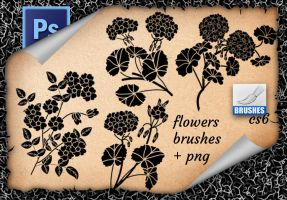 Flowers  Brushes (2) by roula33
