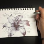 Lily ballpoint pen drawing by JamieTr