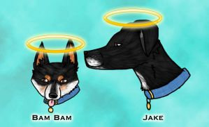 ::R.I.P. Bam Bam and Jake:: by WolvesDestinyBlood