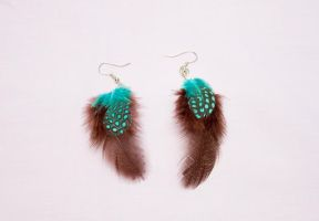 Brown and turquoise feather earrings by theaquallama