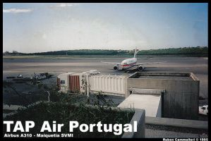 TAP Portugal Airbus A310-304 by l0nd0n