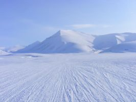 Spitsbergen - out in the open by jzky