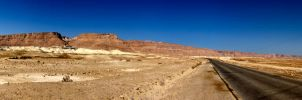 Panoramic Masada by Timothy-Sim
