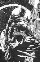 David Finch: Dark Knight Unwrapped by boysicat