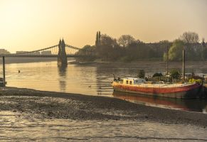 morning in hammersmith by indojo
