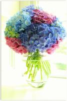 Flowers in a vase by Luisabel123