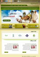 Best Website Design by minutesuae