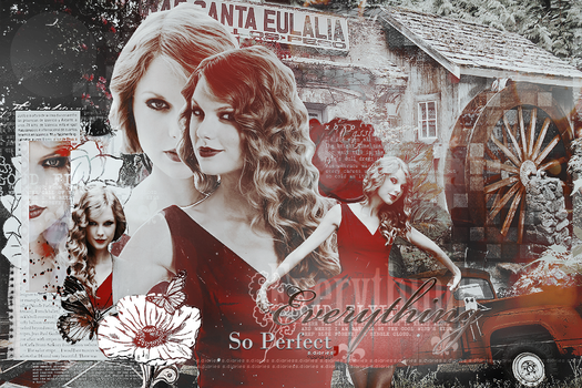 everything so perfect by sara-diaries
