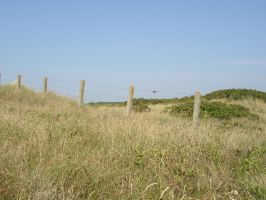 Fence in the dunes 07280058 by Netzlemming