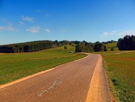 Country road in beautiful scenery by patrickjobst