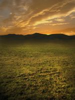 Premade Background Sunset by simfonic