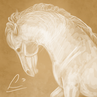 Horse by Lunicc