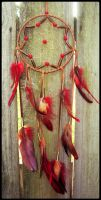 Red and Brown Pheasant Dream Catcher by xsaraphanelia