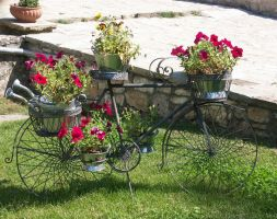 bloomy bicycle by petalouda1980
