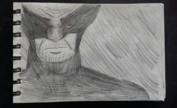 Daily Drawing #6 Wolverine by GniewoszPlamisty