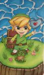 Toon Link Gets Heart Piece by partyboy3543