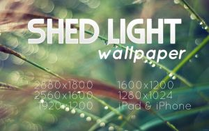 Shed Light Wallpaper by solefield