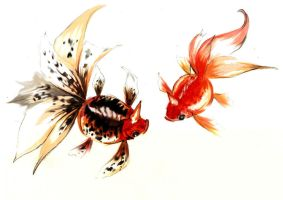 Seaking and Goldeen by PokeShoppe