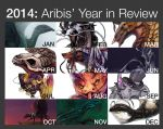 2014 Year in Review by Aribis