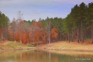 Autumn on the Summer's Plantation II by Rjet33
