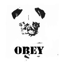 OBEY by chaetoceros