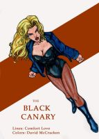 ComfortLove's Black Canary by hawkeye