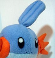 so i herd you liek mudkips? close up by livetoletlive