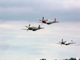 North American P-51 Trio '07 by zammariangod